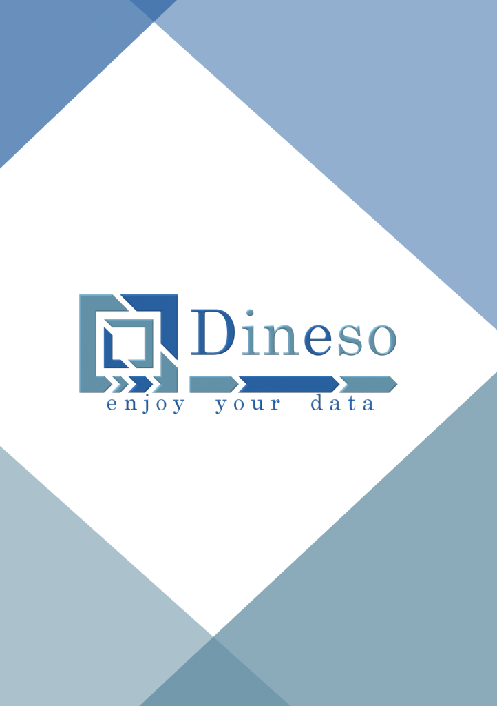 Dineso - Business Intelligence Software
